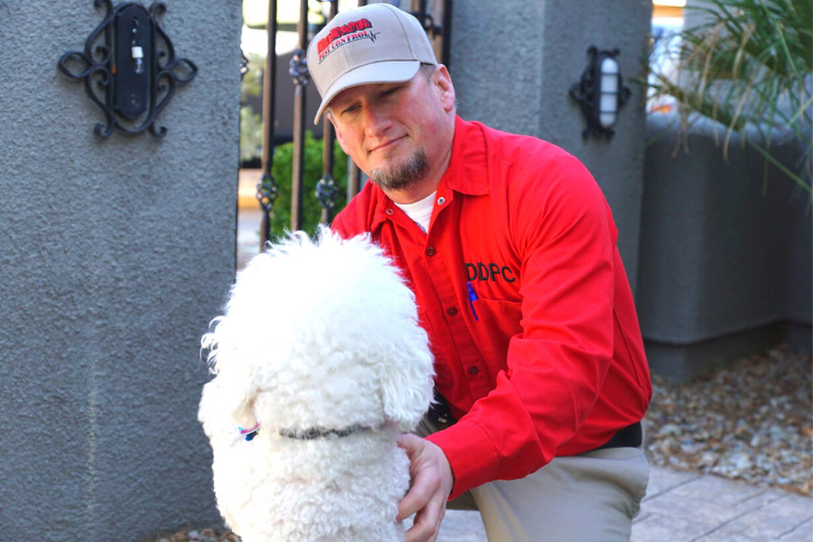 Trevor, the owner of Dr. Death Pest Control a pet-friendly pest control service, petting a dog